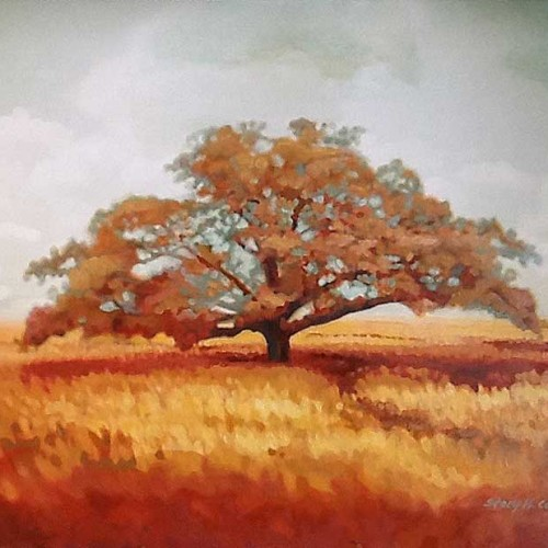 autumn-tree-treescape-lowres-stacy-hatley-carter